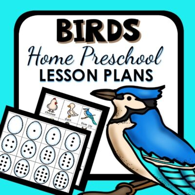 Birds Lesson Plans for Home Preschool