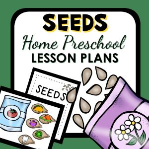 Seed Theme Preschool at Home Lesson Plans