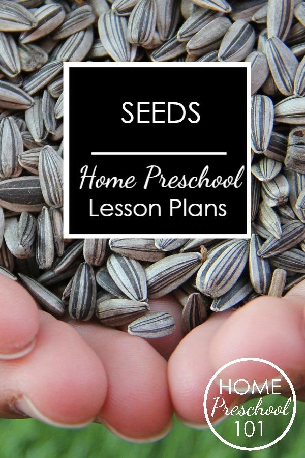 Seeds LP pin