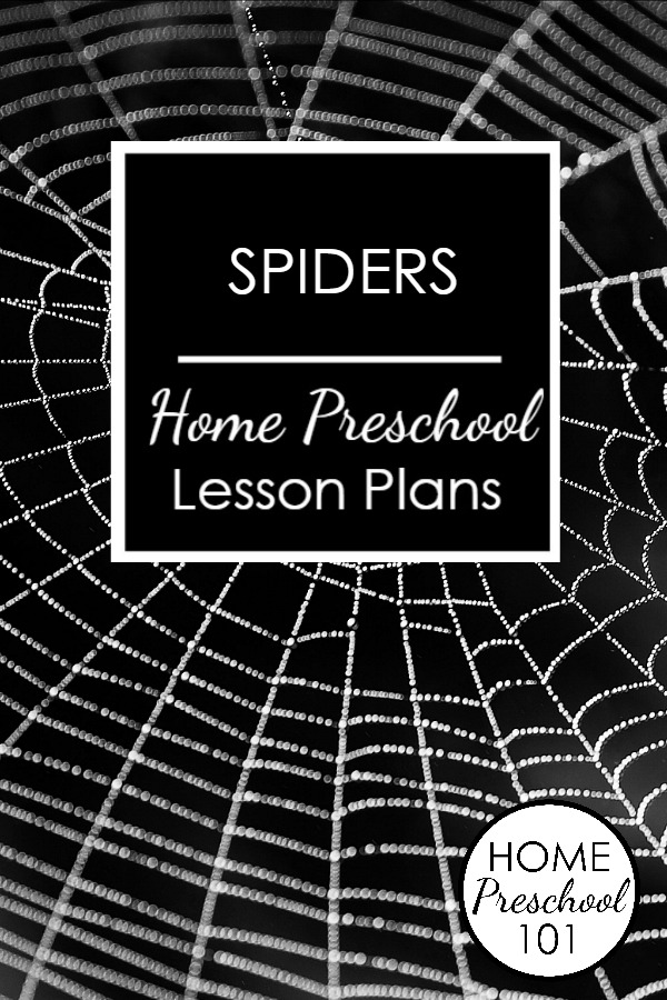 Spider Theme Home Preschool Lesson Plan-Printable full and half day lesson plans with hands-on activities for preschoolers
