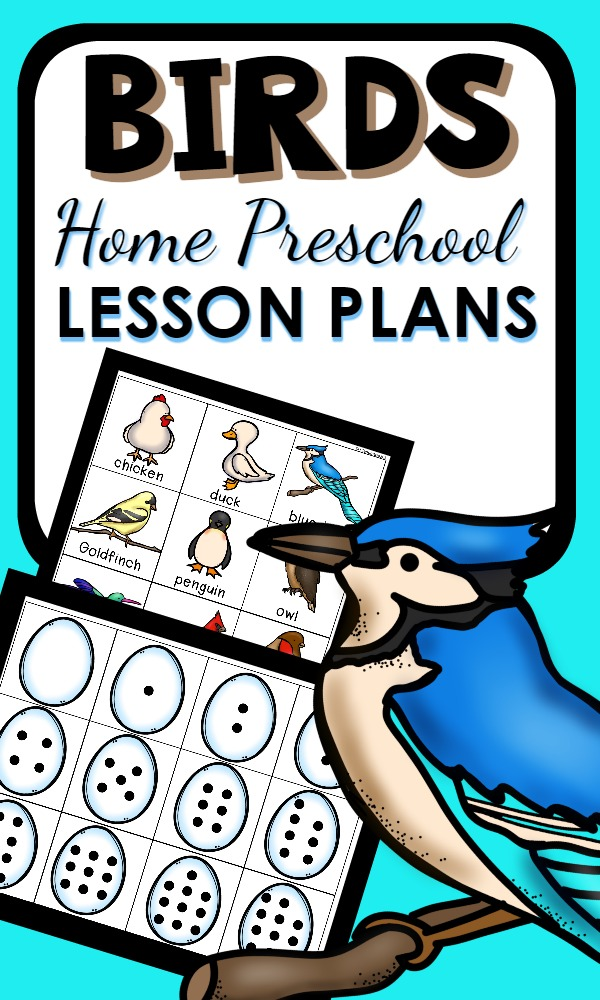 Bird Theme Home Preschool Lesson Plans